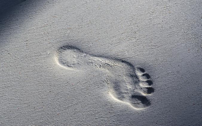Footprint.fw