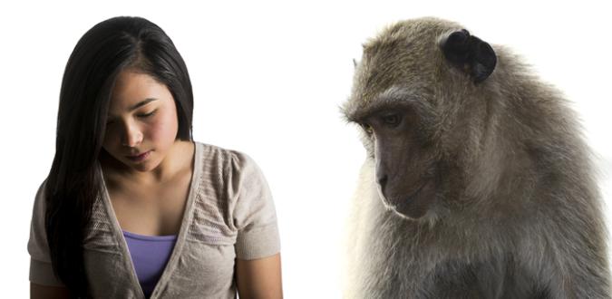 Sad Girl and Monkey.fw